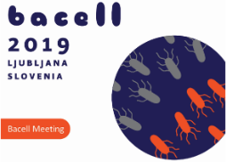 BACELL 2019
